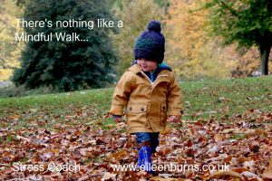 mindful walk kids