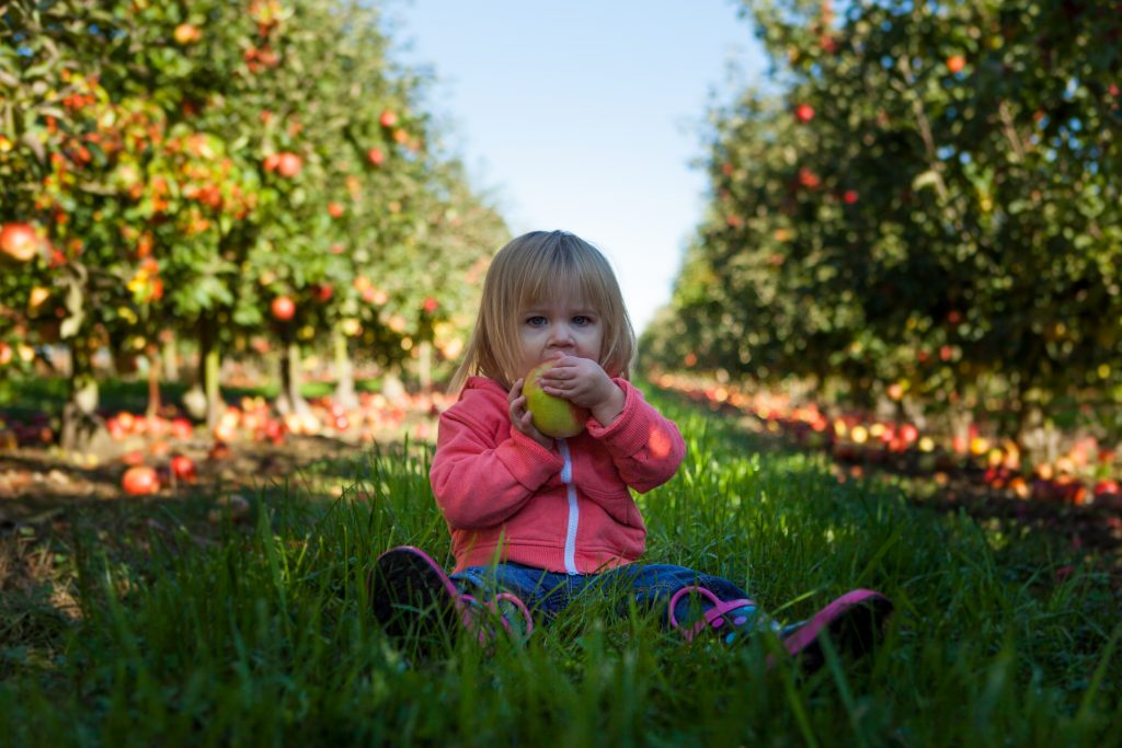 Tackling Textures And Smells – Healthier Eating For The Sensitive Child