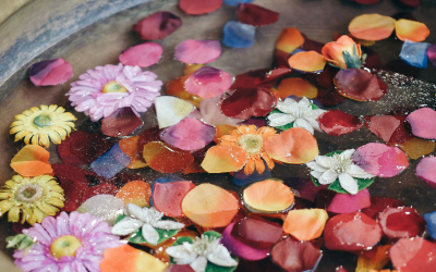 Essential Flower Essences For Empaths and Healers